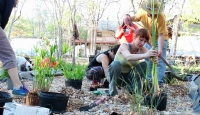 Greywater Wetlands Workday